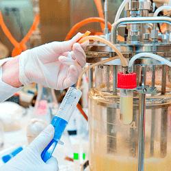 Bioreactor Technology: Upgrade your Gas Flow Control